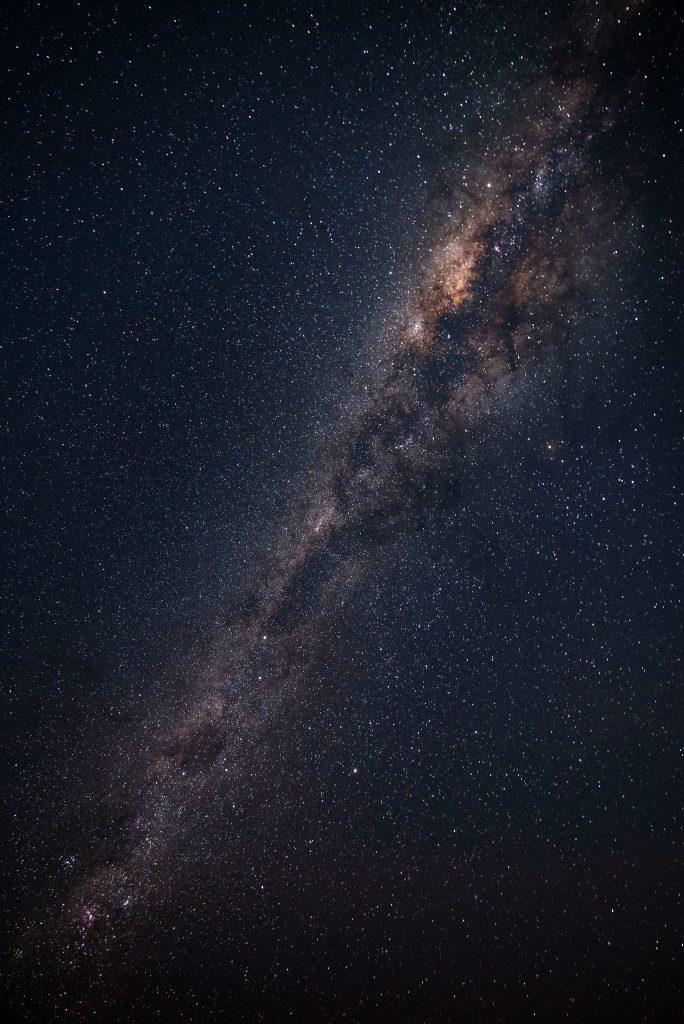 Questa immagine ha l'attributo alt vuoto; il nome del file è pexels-philippe-donn-1257860-684x1024.jpg
